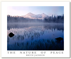 The Nature Of Peace